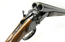 in-stock rifles